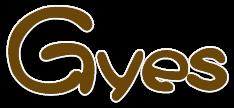 gyes-logo-kopie