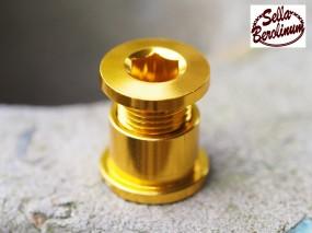 Alu Kettenblatt Schrauben 5er Set für 1 fach Blätter Gold