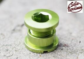 Alu Kettenblatt Schrauben 5er Set für 1 fach Blätter grün